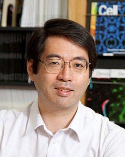 Yoshiki_Sasai,_circa_2012.jpg